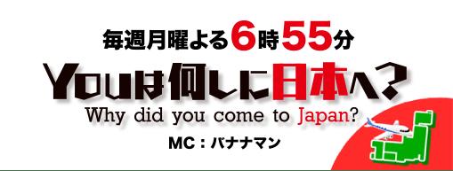 へ you は 何 し に 日本